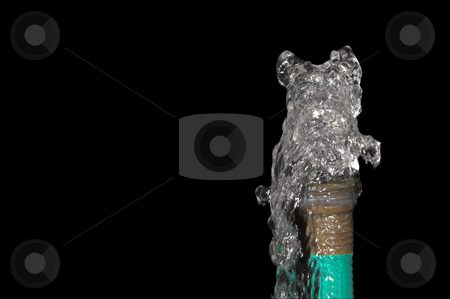 Garden Hose stock photo, Water spewing from a garden hose. Conservation Concept. by Robert Byron