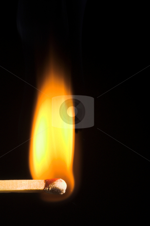 Burning Match stock photo, Image of a wooden kitchen match as it burns. by Robert Byron