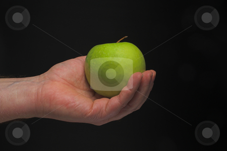Holding an Apple stock photo, A person holding a Granny Smith apple. by Robert Byron