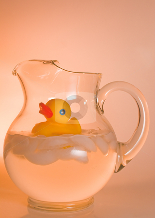 Pitcher of Duck stock photo, A rubber duck in a pitcher of ice water. by Robert Byron