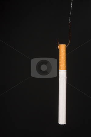 Hooked on Cigarettes stock photo, The concept of being hooked on tobacco products. by Robert Byron