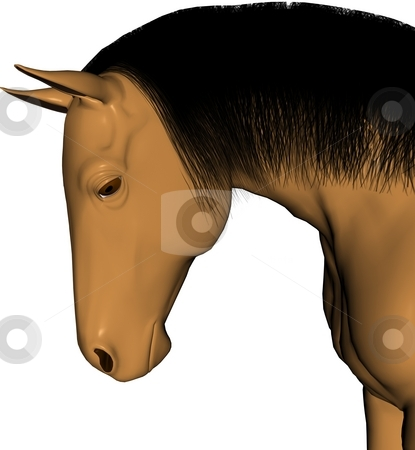 Horse head stock photo, Buckskin colored horse head by Michelle Bergkamp