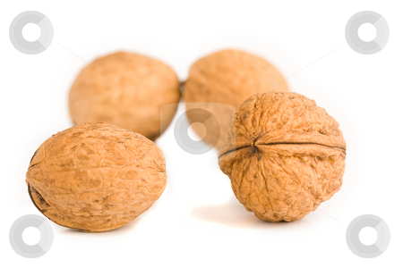 Health food walnut snack on isolated background nutshell stock photo, Health food walnut snack on isolated background nutshell by Ivan Montero