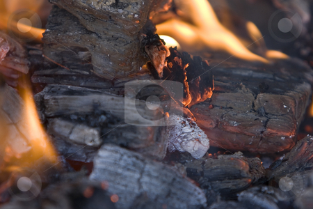 Fire stock photo, Image of burning coal ready for using in the barbacue by Ivan Montero