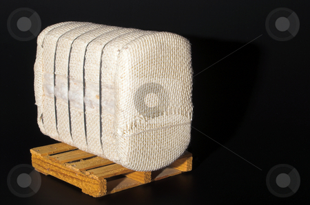 Cotton Bale on a Pallet stock photo, A bale of raw cotton on a pallet. by Robert Byron