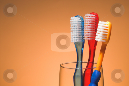 A Family's Toothbrushes stock photo, A family's toothbrushes in a glass container. by Robert Byron