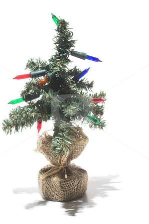Christmas Tree  stock photo, A bright, colorful and festive Christmas tree. by Robert Byron