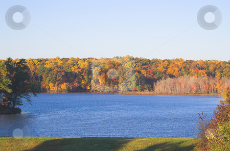 Autumn Lake stock photo, The colorful foliage around a lake in the autumn. by Robert Byron