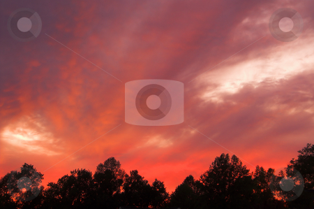 Sunset or Sunrise stock photo, A very colorful sunset or sunrise over trees. by Robert Byron