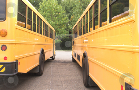 Public school Buses stock photo, A row of school buses in a parking lot. by Robert Byron