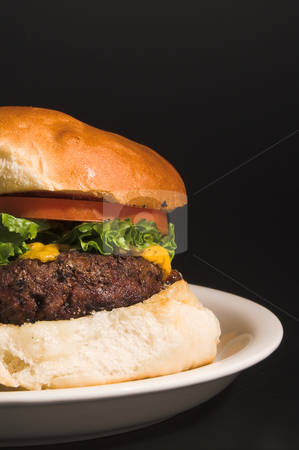 Cheeseburger stock photo, A delicious cheeseburger with all the fixings. by Robert Byron