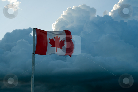 Canadian Flag stock photo, A Canadian flag shot against some cumulus clouds by Richard Nelson