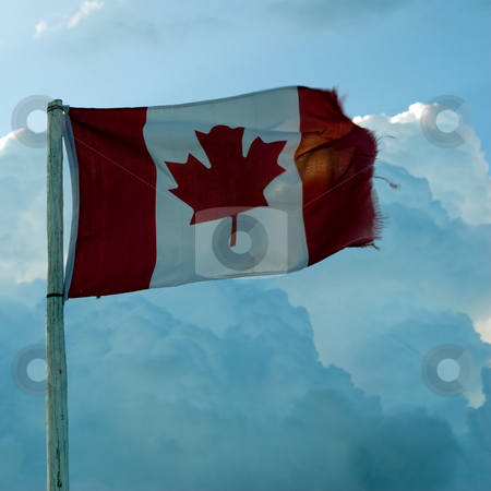 Canadian Flag stock photo, A traditional Canadian flag blowing in the wind, shot against some clouds by Richard Nelson