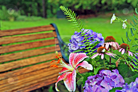 Backyard landscape stock photo, Flower arraingment with backyard landscape by Jack Schiffer