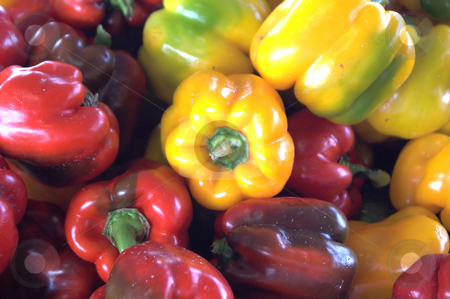 Assorted Bell Peppers stock photo, An assortment of very colorful fresh bell peppers. by Robert Byron