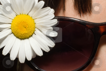 Macro Daisy stock photo, Close-up view of a white daisy and a young girls sunglasses by Richard Nelson