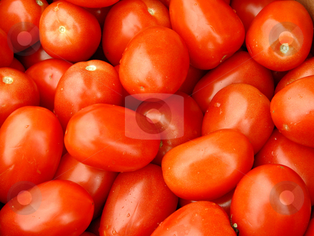 Roma Tomatos stock photo, Close up shot of tomatos in a basket at the market by Jack Schiffer