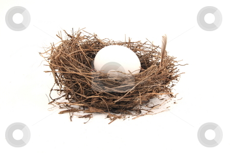 Nest Egg stock photo, Saving for the future of family by Jack Schiffer