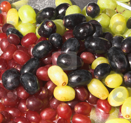 Assorted Grapes stock photo, A silver platter full of assorted fresh grapes. by Robert Byron