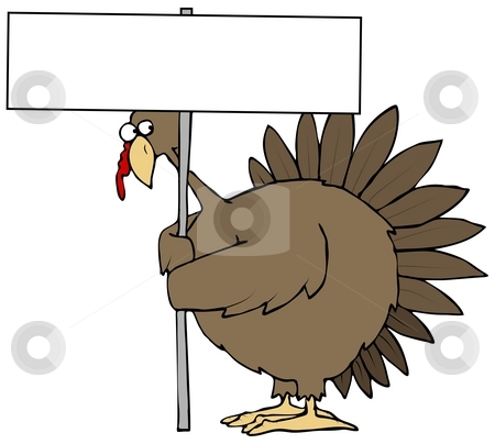 Turkey Peeking From Behind A Sign stock photo, This illustration depicts a turkey peeking from behind a blank sign. by Dennis Cox