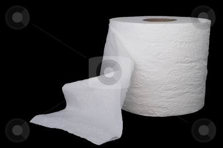 Toilet Paper stock photo, A new roll of white 2 ply toilet paper. by Robert Byron