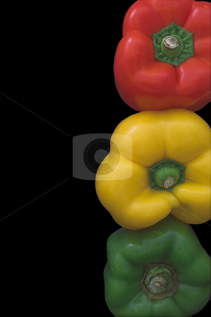 Stoplight Bell Peppers stock photo, Several fresh and delicious stoplight bell peppers. by Robert Byron