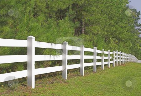 Split Rail Fence stock photo, A decorative white split rail fence. by Robert Byron