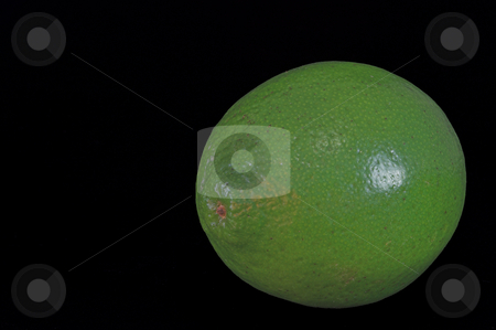 Green Lime stock photo, A fresh and delicious sour green lime. by Robert Byron
