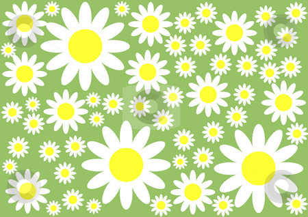 Floral Background stock photo, White and yellow flowers on the green background by Petr Koudelka