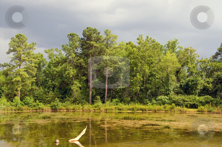 Stormy Lake stock photo, A storm brewing over a small lake. by Robert Byron