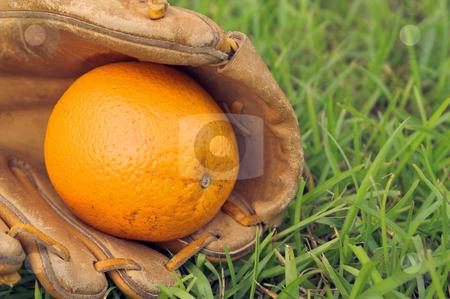 An Orange in a Baseball Glove stock photo, A delicious orange in a baseball glove. by Robert Byron