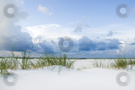 Sandy Dunes stock photo, Sandy dunes with grass and blue skies by A Cotton Photo