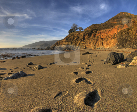 Footprints on Big Sur Beach stock photo, Footprints heading off into the distance on the beach at Big Sur, California with the water, cliffs and a beautiful sky in the background by A Cotton Photo