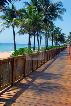 Florida Beach Board Walk stock photo, Beach Board walk at a Florida Resort by Robert Cabrera