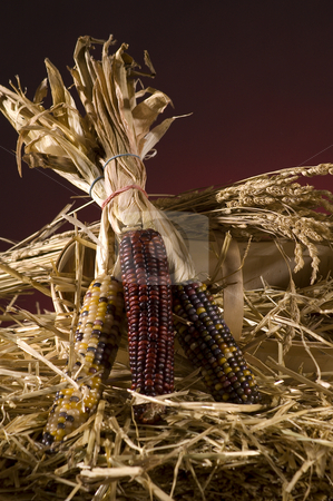 Corn stock photo, Arrangement of squash and corn on a haystack by Vlad Podkhlebnik