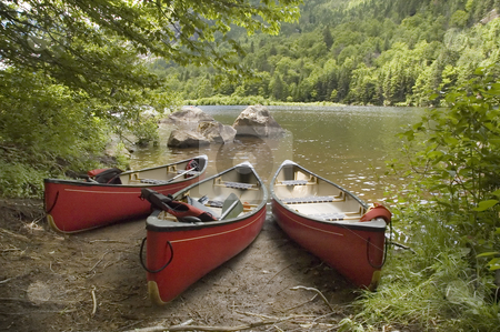 Canoes stock photo, Three red canoes docked near a lake shore by Vlad Podkhlebnik