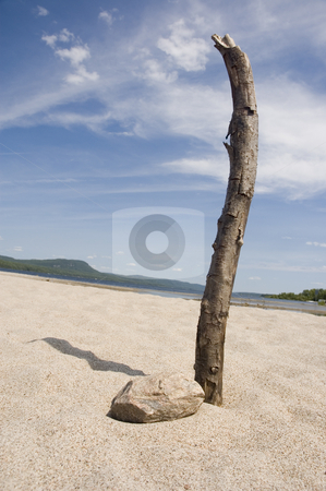 Beach stock photo, A branch of a dead tree and a rock in the sand by Vlad Podkhlebnik