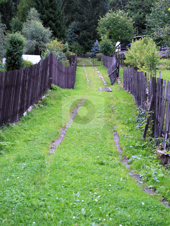 Mountain Grassy Path stock photo, A small grassy mountain path between two fences by Petr Koudelka