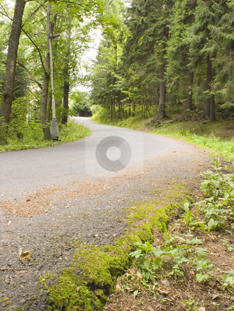 Mountain Road stock photo, A small winding mountain road in the woods by Petr Koudelka