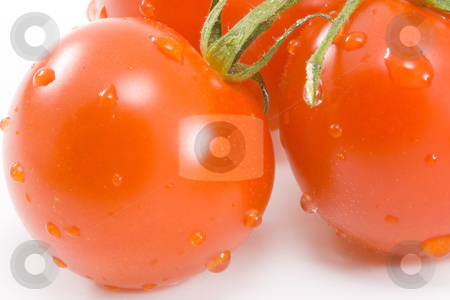 Tomatos stock photo, Tomatos - healthy eating - vegetables - close up by Petr Koudelka