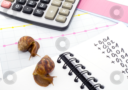 Slow Business stock photo, This business is going really snail slow! by Petr Koudelka