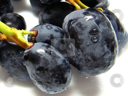 Black grapes stock photo,  by ZaKaRiA- MaStErPiEcE