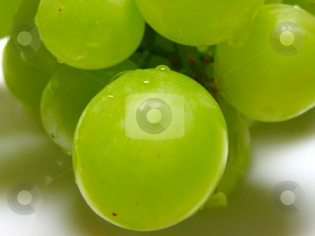 Green grapes close up stock photo,  by ZaKaRiA- MaStErPiEcE