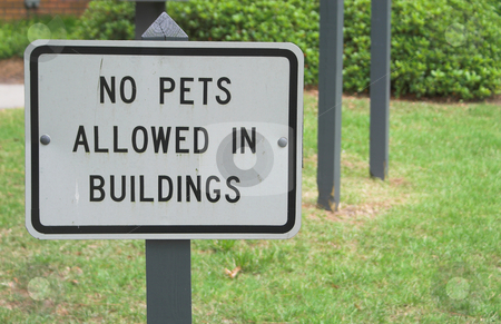 No Pets Allowed In Building stock photo, A sign stating No Pets Allowed In Building by Robert Byron
