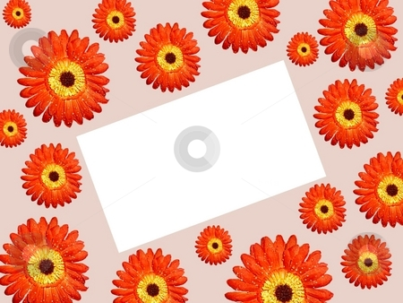 Borders daisy paper tilt right stock photo,  by ZaKaRiA- MaStErPiEcE