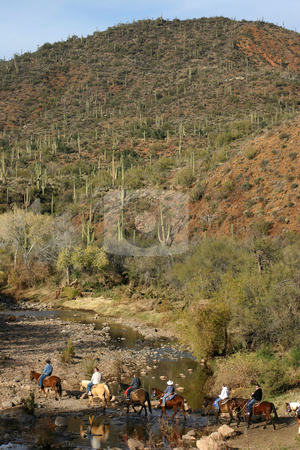 Desert Horse Ride stock photo, A group of horse riders crosses an Arizona river in the desert. by MIca Mulloy