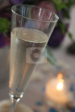 Wedding Champagne Toast stock photo, Champagne toast by MIca Mulloy