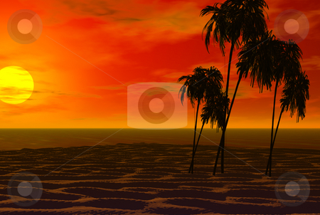 3D rendered sunset background stock photo, 3D rendered sunset with palm trees great for backgrounds desktops and beautiful prints by Michelle Bergkamp