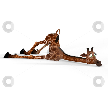 Giraffe with a funny face stock photo, Rendered Image of a really cute animal Image contains a Clipping Path by Ralf Kraft
