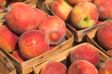 Peaches stock photo, Delicious peaches on display at a farmer's market. by Robert Byron